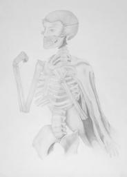 Superhero - pencil on paper - 50 x 70 cm